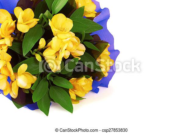 Bouquet of yellow fresia flower - csp27853830