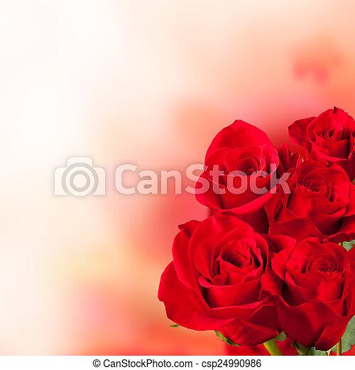 bouquet, roses, rouges - csp24990986