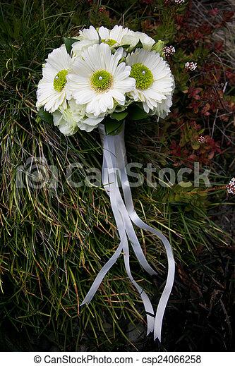 Bouquet. - csp24066258
