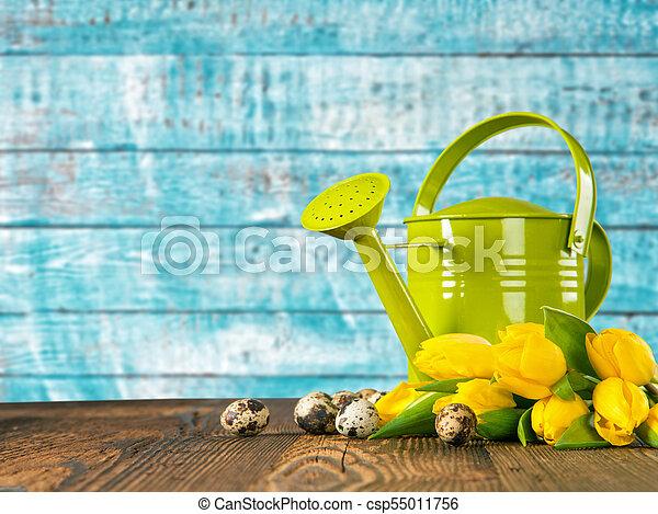 bouquet, tulipes, arrosage, coloré, boîte - csp55011756
