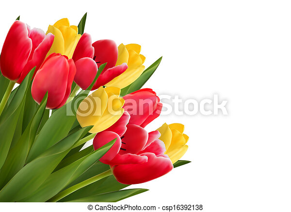 Bouquet With Red And Yellow Flowers In White Background Vector