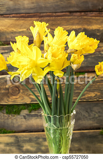 Bouquet Yellow daffodil in a glass vase on a wooden background. Copy space - csp55727050
