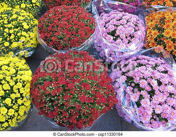 Bouquets of flowers. - csp11330164