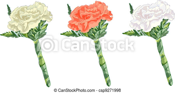 Boutonniere with a carnation. - csp9271998