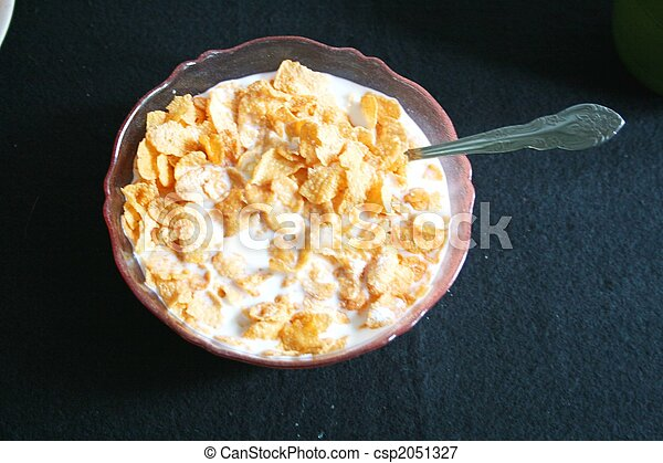 Bowl of cereal and milk - csp2051327