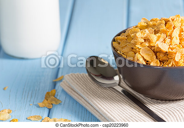 Bowl of cereal - csp20223960