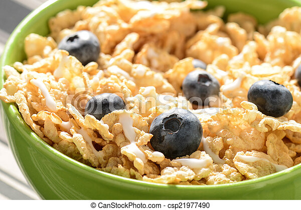 Bowl of Cereal - csp21977490