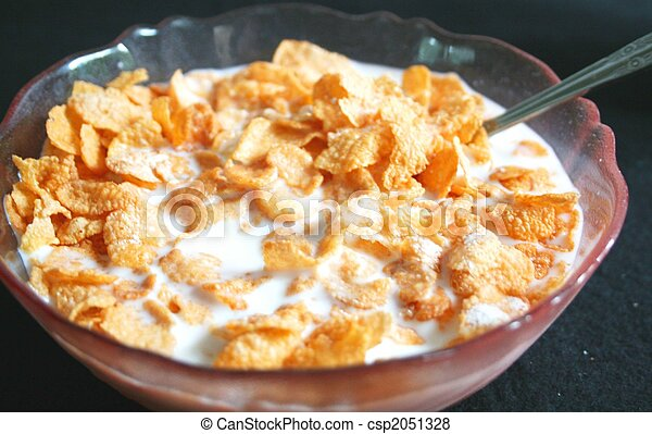 Bowl of cereal with milk - csp2051328