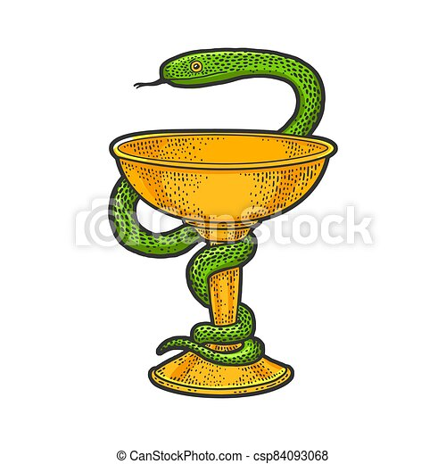 Bowl of Hygieia symbols of pharmacy color sketch engraving vector illustration. T-shirt apparel print design. Scratch board imitation. Black and white hand drawn image. - csp84093068