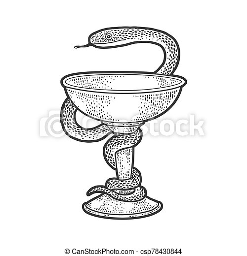 Bowl of Hygieia symbols of pharmacy sketch engraving vector illustration. T-shirt apparel print design. Scratch board imitation. Black and white hand drawn image. - csp78430844