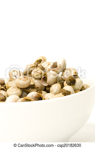 Bowl of snails in garlic, typical plate of Spain and France - csp20182630