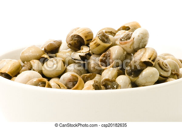 Bowl of snails in garlic, typical plate of Spain and France - csp20182635