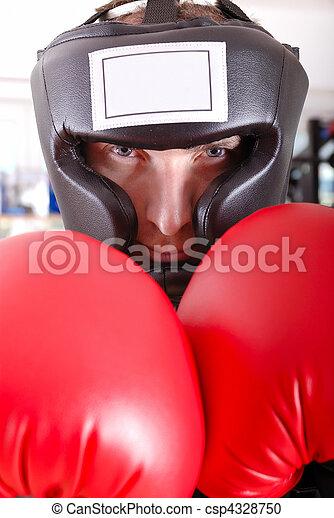 .boxer, closeup, gesicht - csp4328750