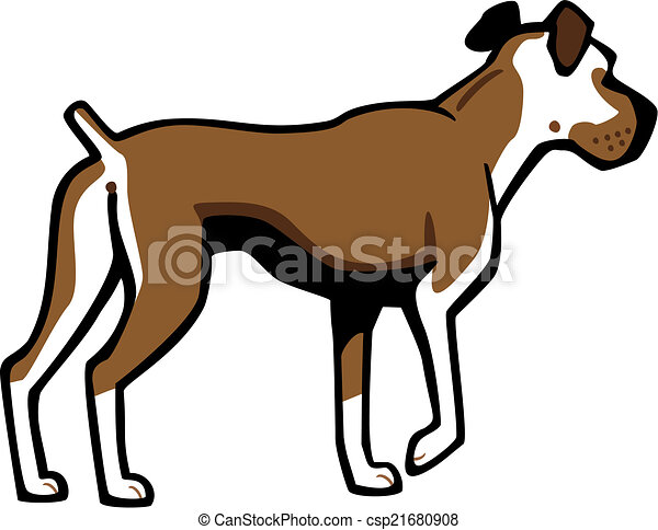 vector illustration a boxer dog standing alert one foot vector rh canstockphoto com boxer dog face clipart