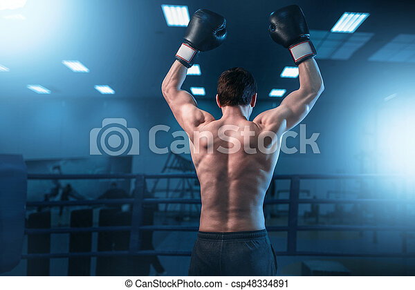 Boxer in gloves hands up on the ring, back view