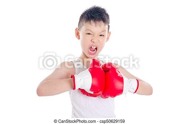 boxer over white background - csp50629159