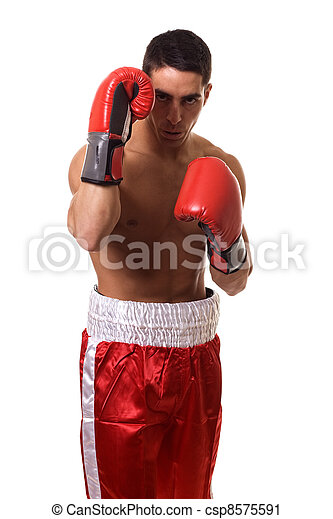 Boxer - csp8575591