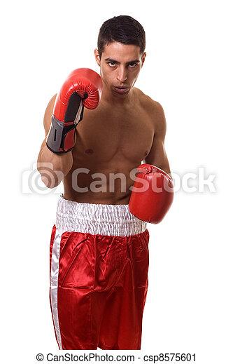 Boxer - csp8575601