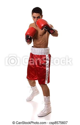 Boxer - csp8575607