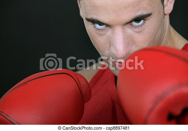 Boxer - csp8897481