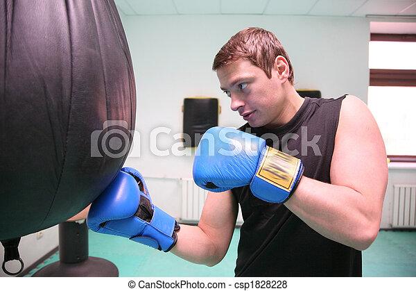 boxer - csp1828228