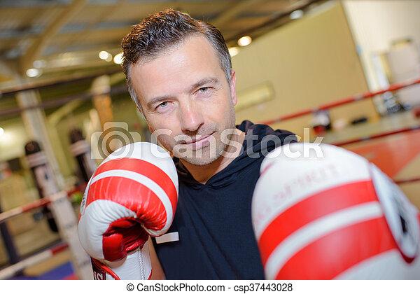 boxer - csp37443028