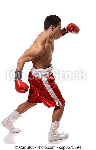 Boxer - csp8575594