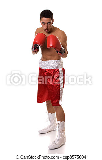 Boxer - csp8575604