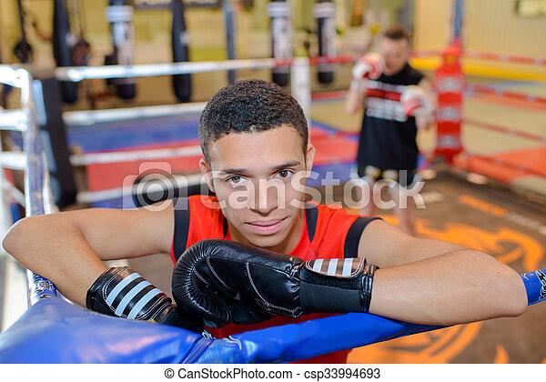 boxer - csp33994693