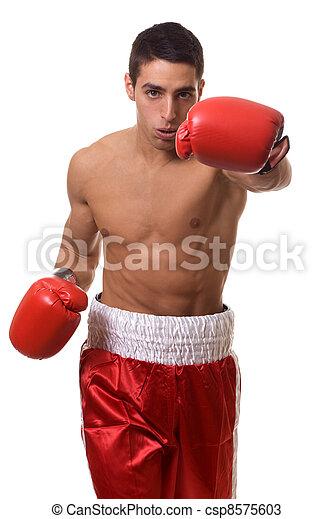 Boxer - csp8575603