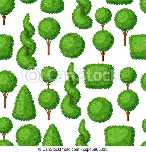 for ornamental decorative landscaping india decor evergreen tree maple trees