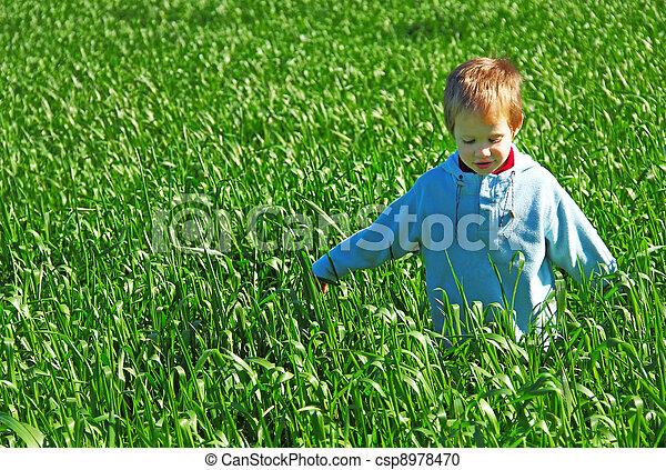 boy in a green field - csp8978470
