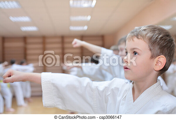 boy in sports hall is engaged in karate - csp3066147