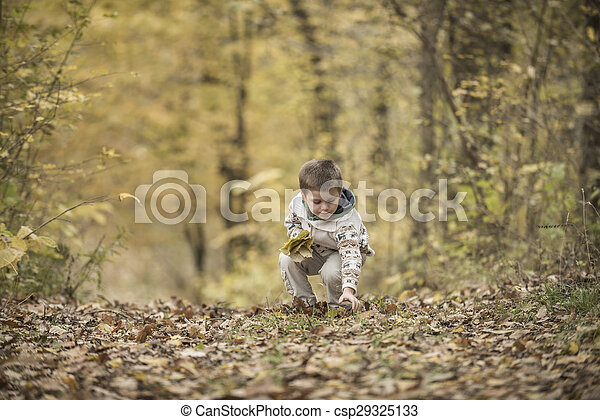 boy playing in a forest - csp29325133