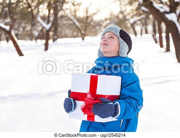 boy with Christmas present - csp12545214