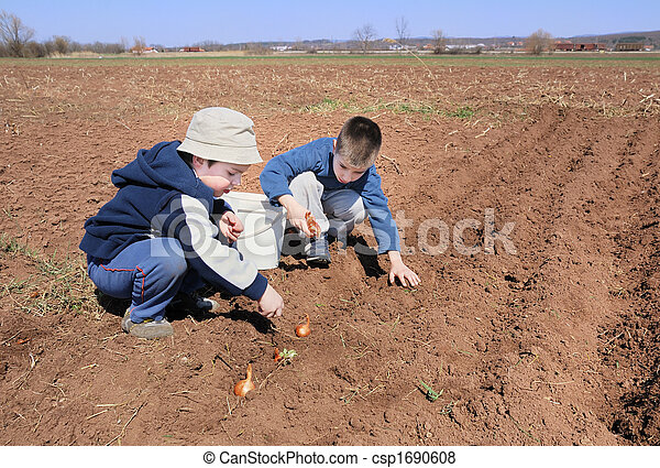 Boys sowing onion - csp1690608