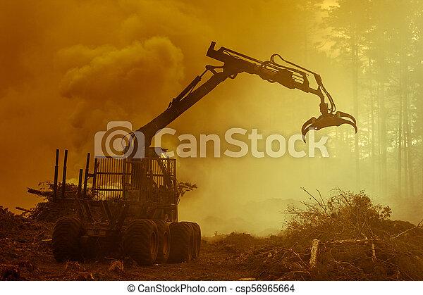 brûlé, brûler, tractor., waste., forêt, fumée, découpage - csp56965664