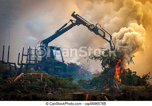 brûlé, brûler, tractor., waste., forêt, fumée, découpage - csp56965768