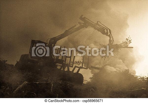 brûlé, brûler, tractor., waste., forêt, fumée, découpage - csp56965671