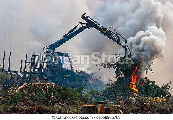 brûlé, brûler, tractor., waste., forêt, fumée, découpage - csp56965783