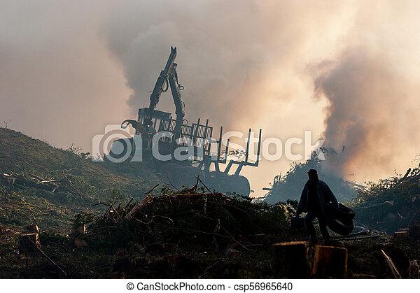 brûlé, brûler, tractor., waste., forêt, fumée, découpage - csp56965640
