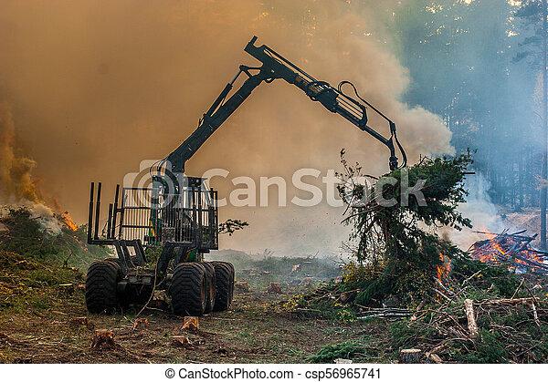 brûlé, brûler, tractor., waste., forêt, fumée, découpage - csp56965741
