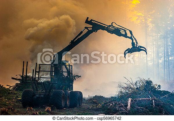 brûlé, brûler, tractor., waste., forêt, fumée, découpage - csp56965742