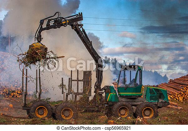 brûlé, brûler, tractor., waste., forêt, fumée, découpage - csp56965921