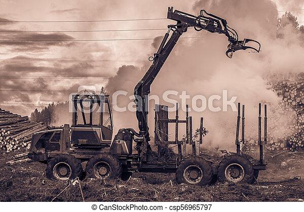 brûlé, brûler, tractor., waste., forêt, fumée, découpage - csp56965797