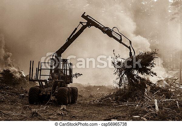 brûlé, brûler, tractor., waste., forêt, fumée, découpage - csp56965738