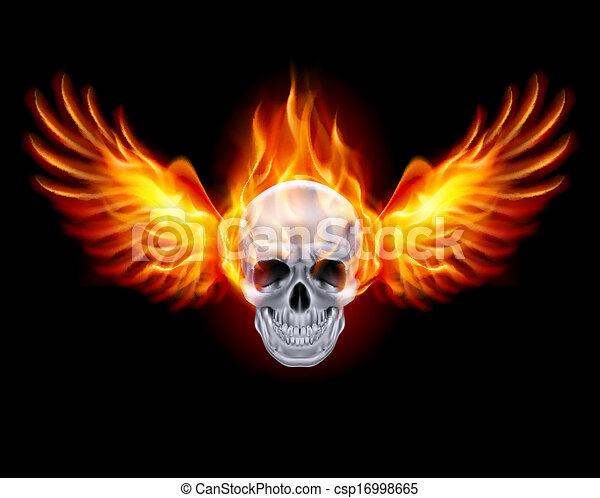 brûler, wings., ardent, crâne - csp16998665
