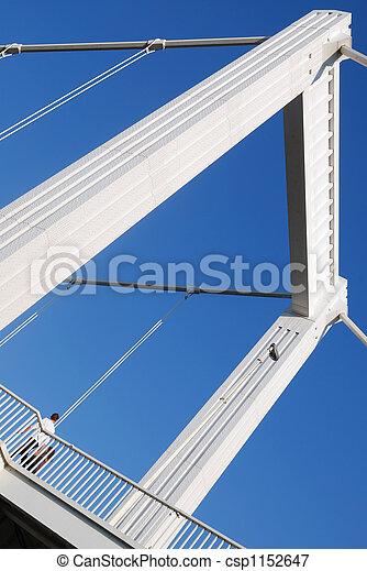 Elizabeth Bridge 2. - csp1152647