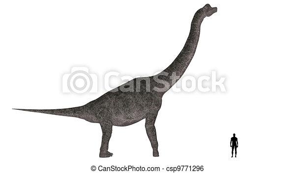 Comparación de tamaño Brachiosaurus - csp9771296