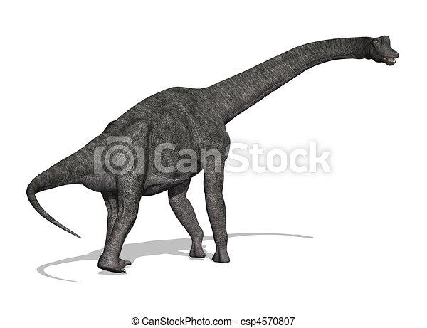 Brachiosaurus Dinosaur - csp4570807